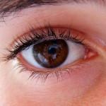 Изследователи на зрението с награда от 1 милион