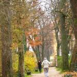 Ходете пеш всеки ден за здраве и дълголетие
