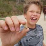 Само 20 % от децата в България посещават стоматолог