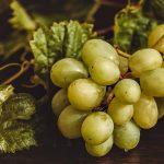 Здравословни есенни плодове, които подценяваме