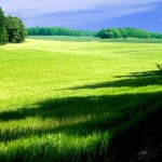 Опазването на околната среда и правата на гражданите на Европейския Съюз