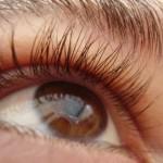 Стволови клетки възстановят слух и зрение?