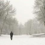 Разходка сред природата стимулира умствената дейност