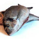 Риба за здраве с рецепти за рибник