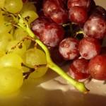 Екстракт от грозде срещу рак