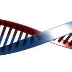 Гени определят мястото ни в обществото