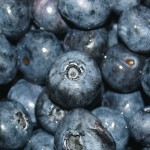 Боровинки свалят излишните килограми