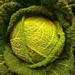 Зеле и броколи за здраве
