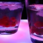 Умереното пиене е полезно за мозъка