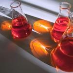 Ново изследване: Имунната система си пази раковите клетки