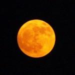 Фазите на луната и красотата