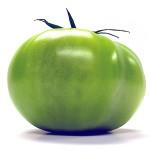 Зеленият домат също е полезен