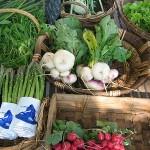 Био храните не били по-полезни от другите