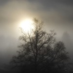 Съвети за избягване на зимната депресия