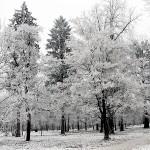 Още съвети за избягване на зимната депресия