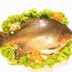 Рибата толкова е полезна, колкото я сготвим