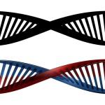 Дешифрираха гена на рака на кожата и на белия дроб