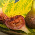 Плодове срещу рак
