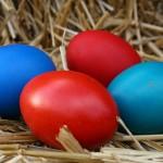 Яйцата за Великден 2010 в България
