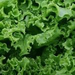 Зеленолистни зеленчуци срещу диабет