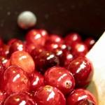 Червени боровинки за здрави зъби