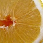 Още за полезните лимони