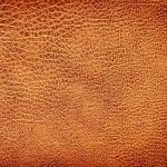 Обработената кожа често вреди на здравето