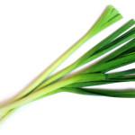 Полезният пресен зелен лук