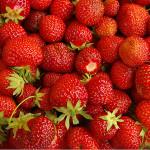 Ягоди за здраве и младост