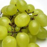 Екстракт от грозде предпазва от слънчево изгаряне