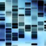 1% от човешките гени са с изгубени функции