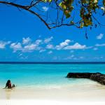 1 грам пясък на плажа съдържа над 1000 вида бактерии