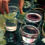 Китайска билка предпазва от алкохолизъм