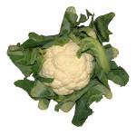 Екстракт от карфиол, броколи и зеле срещу рак на гърдата