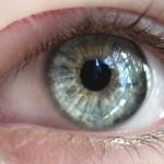 Безплатни очни прегледи за глаукома и катаракта в Пловдив през март 2013 година