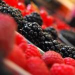 Горски плодове предпазват мозъка от стареене