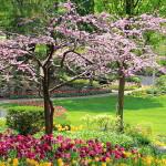 Симптоми при пролетна алергия