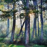 Повече светлина сутрин помага за отслабване