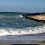 Хепатит А в морската вода по българското Черноморие?