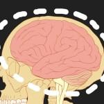 Човешкият мозък се свива при едновременни дейности