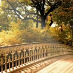Съвети срещу есенна меланхолия