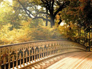 есенна светлина