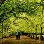 Разходка срещу лакомия