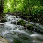Водните запаси на света се изчерпват