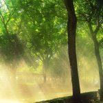 Колко са опасни слънчевите лъчи?