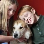 Куче помага срещу тревожно разстройство у децата