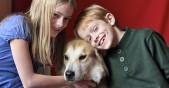 деца с куче