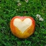 Откриха нови гени, влияещи сърдечно-съдовите заболявания