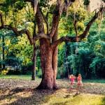 Игра на открито намалява риска от късогледството при децата