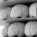 Протеин лекува Алцхаймер